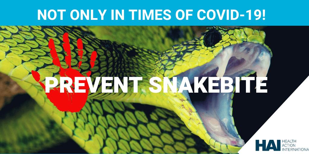 snakebite COVID-19